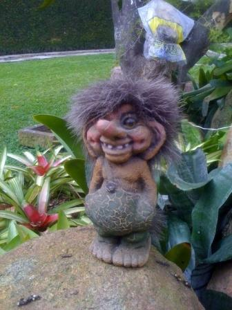 Man charged after fiery argument over whether earth is for Garden trolls