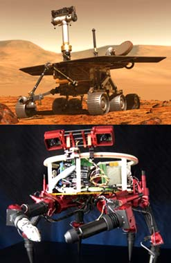 Mars Rover (top); Lemur (bottom) credit: NASA/JPL-Caltech