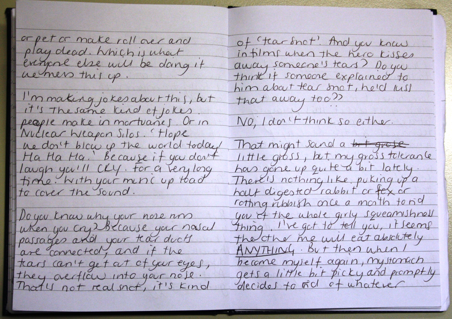 Bloodhound Diary Entry Page 2
