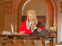 The Judge in the Courtroom Experience