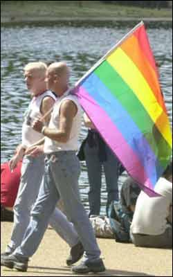 gay_flag_250x400.jpg