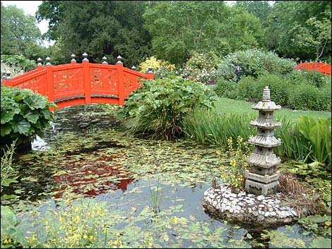 Bbc wiltshire in pictures summer part 2 calendar comp for Japanese water garden