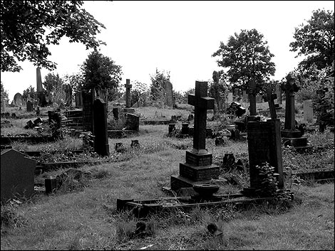 http://www.bbc.co.uk/wiltshire/content/images/2007/07/31/radnor_street_cemetery_1_470x353.jpg