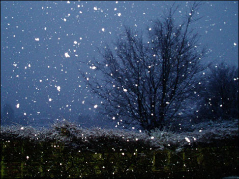 winter18 470x353