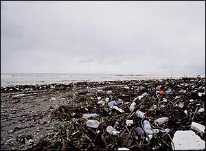 وقتی دریا بعد از یک روز طوفانی تمامی زباله های انسانها را به آنها باز می گرداند. ساحل دریای خزر، رامسر، عکاس: مهرسان جوان